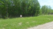 Lots and Land for Sale in Lac Ste. Anne County, Lac Ste Anne County, Alberta $215,000