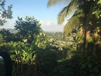 Lots and Land for Sale in Carraizo, Trujillo Alto, Puerto Rico $94,000