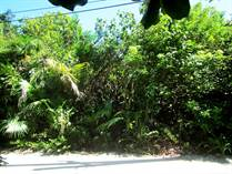 Homes for Sale in Village, Caye Caulker, Belize $250,000