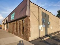 Commercial Real Estate for Sale in pillette, Windsor, Ontario $550,000