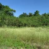 Homes for Sale in BO BORINQUEN, Aguadilla, Puerto Rico $56,000