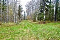 Farms and Acreages for Sale in Vilna, Alberta $102,000