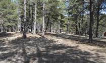 Lots and Land for Sale in Angel Fire, New Mexico $24,900