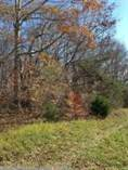 Lots and Land for Sale in Lake Cumberland, Russell Springs, Kentucky $9,000