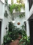 Condos for Rent/Lease in Viejo San Juan, San Juan, Puerto Rico $2,000 monthly
