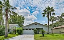 Homes for Sale in Pelican Bay, Daytona Beach, Florida $212,400