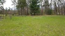 Lots and Land for Sale in Wisconsin Dells, Wisconsin $52,500