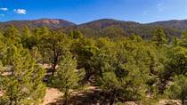Lots and Land for Sale in Arroyo Hondo, New Mexico $70,000