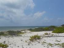 Lots and Land for Sale in Mahahual, Quintana Roo $1,250,000