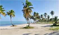 Lots and Land for Sale in Cap Cana, La Altagracia $2,850,000