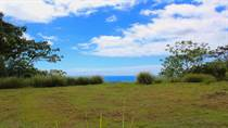 Lots and Land for Sale in Dominical, Puntarenas $69,000
