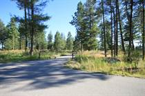 Lots and Land for Sale in Rural, Osoyoos, British Columbia $195,500