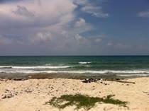 Lots and Land for Sale in Puerto Morelos, Quintana Roo $1,000,000