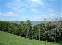 Lots and Land for Sale in Arenal, Guanacaste $62,500
