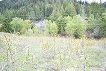 Lots and Land for Sale in Boswell, British Columbia $159,900