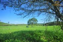 Lots and Land for Sale in Olon, Santa Elena $40,000