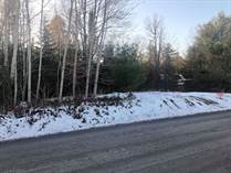 Lots and Land for Sale in ST PASCAL, St-Pascal, Ontario $99,900