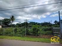 Lots and Land for Sale in Bo. Campo Alegre, Hatillo, Puerto Rico $38,500