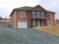 Homes for Sale in South River, Newfoundland and Labrador $379,900