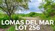 Lots and Land for Sale in Matapalo Beach , Guanacaste $45,980
