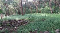 Lots and Land for Sale in Playa Samara, Guanacaste $67,000