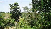 Lots and Land for Sale in Bo. Cruces, Aguada, Puerto Rico $150,000