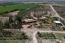 Homes for Sale in Carretera A Dolores, Guanajuato $1,500,000