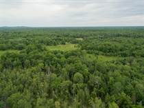 Lots and Land for Sale in North of Madoc, Madoc, Ontario $375,000