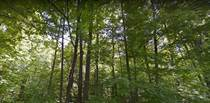 Lots and Land for Sale in Ontario, Oro-Medonte, Ontario $999,999