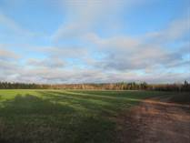 Lots and Land for Sale in Village Green, Birch Hill, Prince Edward Island $135,000