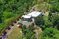 Homes for Sale in Hato Viejo, Ciales, Puerto Rico $1,500,000