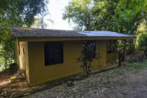 Homes for Sale in Platanillo, Dominical, Puntarenas $110,000
