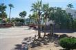 Lots and Land for Sale in CABO BELLO , Cabo San Lucas , Baja California Sur $95,000