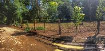 Lots and Land for Sale in Hatillo, Puntarenas $17,500