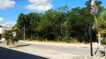 Lots and Land for Sale in El Tigrillo, Playa cdel Carmen, Quintana Roo $68,000