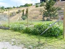 Homes for Sale in Okanagan Falls, British Columbia $779,900