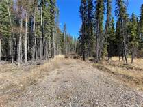 Lots and Land for Sale in Candle Lake, Saskatchewan $55,000