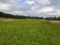 Lots and Land for Sale in Belle River, Prince Edward Island $179,500