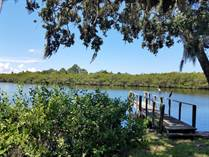 Homes Sold in Ruskin, Florida $24,900