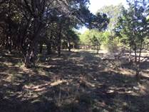 Lots and Land Sold in John Newcombe Tennis Ranch, New Braunfels, Texas $89,900