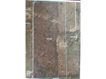 Lots and Land for Sale in Linden, Michigan $140,000