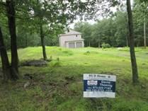 Homes for Sale in Pocono Ranchlands, Lehman Township, Pennsylvania $122,232