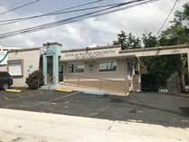 Commercial Real Estate for Sale in Ave Betances, Bayamon, Puerto Rico $265,000