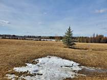 Lots and Land for Sale in Buck Lake, Alberta $145,000