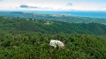 Farms and Acreages for Sale in Pitahaya, Luquillo, Puerto Rico $625,000