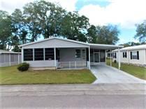 Homes for Sale in Forest Lake Estates, Zephyrhills, Florida $21,500