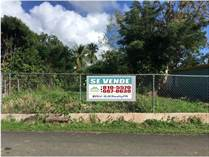 Lots and Land for Sale in Bo. Chupacallos, Ceiba, Puerto Rico $49,000