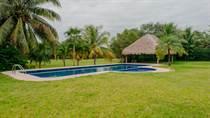 Homes for Sale in Puerto Aventuras, Quintana Roo $250,000