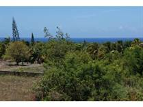 Lots and Land for Sale in Cabarete, Puerto Plata $69,000
