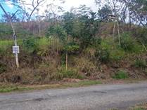 Lots and Land for Sale in Ensenada, Rincon, Puerto Rico $42,500